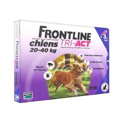 Traitement anti-puce Frontline Tri Act pour Grands Chiens
