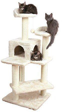 arbre-chat-minou
