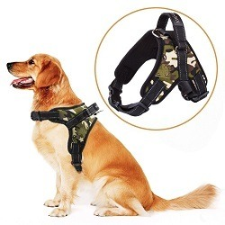 Harnais Chien MerryBIY Dog Harness VestFR6