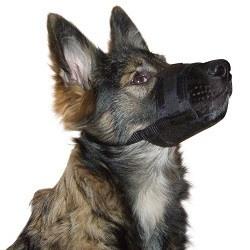 Muselière pour chien Kerbl 82147