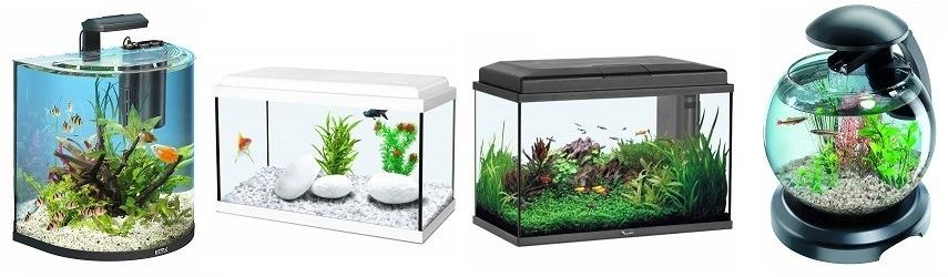 comparatif aquarium