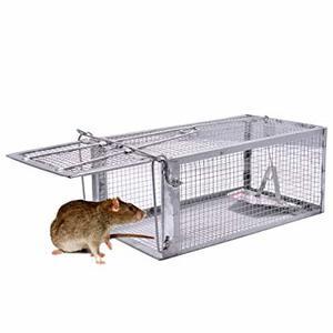 piège cage rat