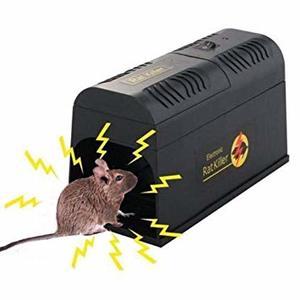 piege electrique rat